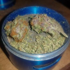 Cherry razz indica cannabis seeds