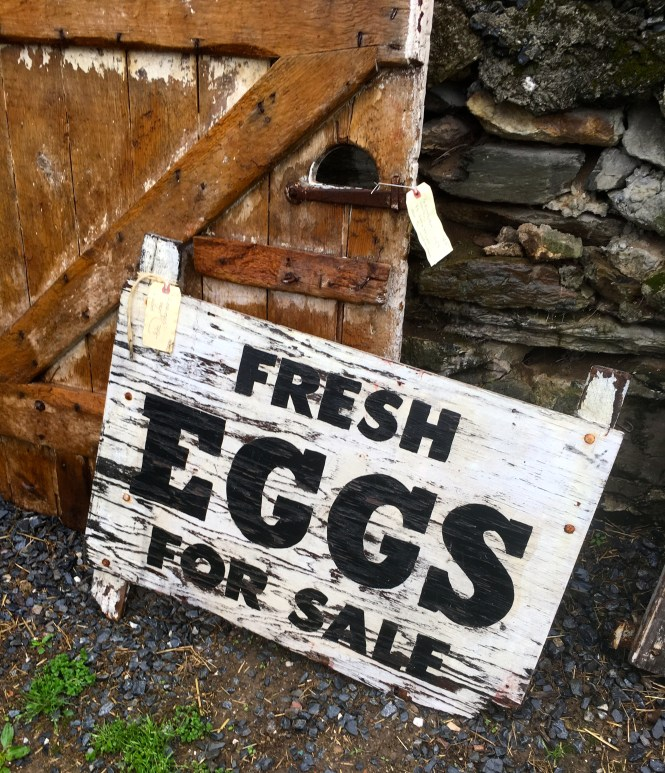 Farmhouse sign fresh eggs