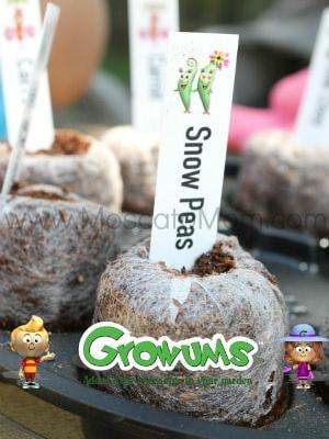 Gardening With GrowUms