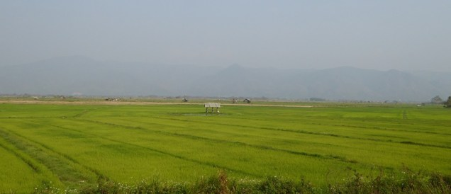 ChiangKhong_10