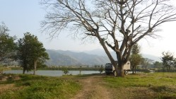 ChiangKhong_11