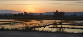 Nong Khiao_105