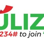 All you need to know about the Fuliza Mpesa service by Safaricom