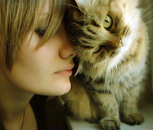 Почему коты часто трутся о ноги человека