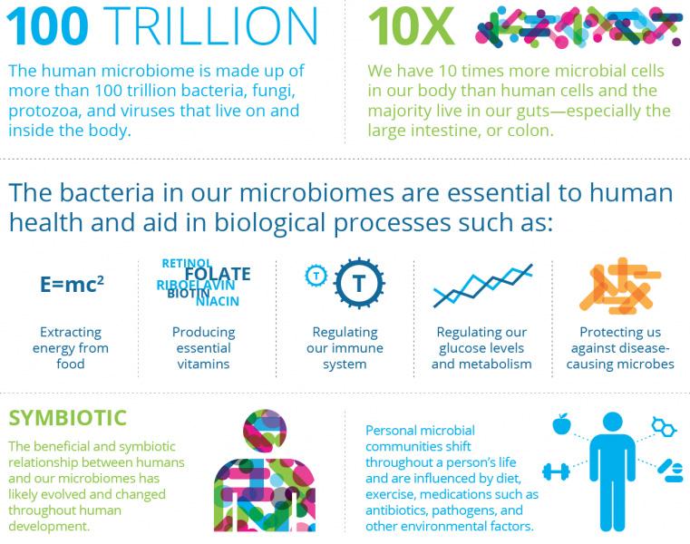 microbiome - Seres перезапустит эксперименты с лечением дисбиоза