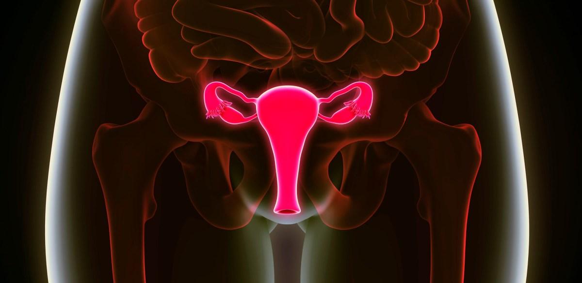 Авелумабу снова не подфартило с раком яичников