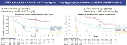 belantamab-mafodotin-nct03525678-results-03