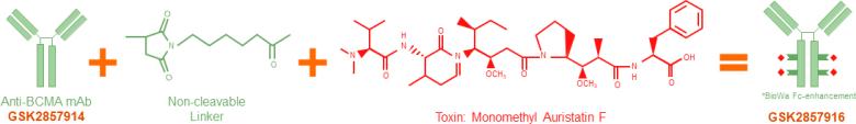 Белантамаб мафодитин (belantamab mafodotin).