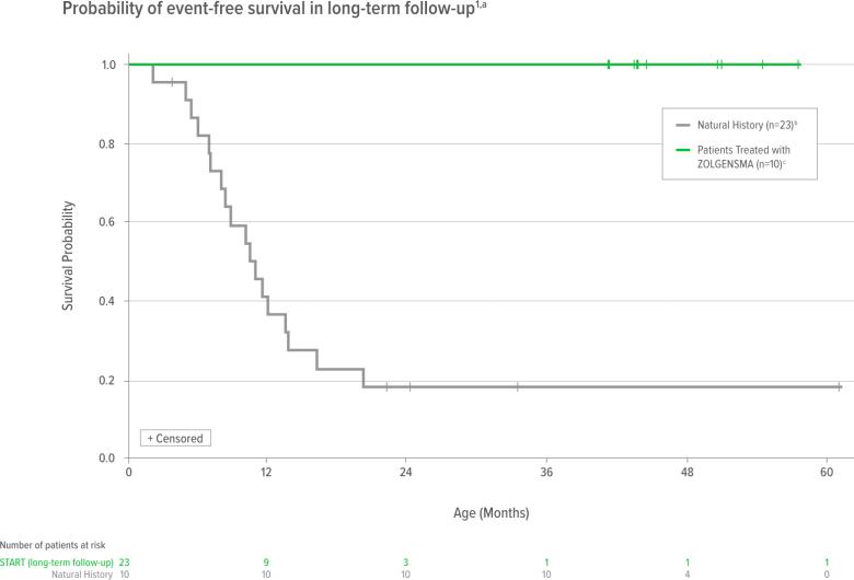zolgensma start results 04 - «Золгенсма»: генная терапия, которая вылечит спинальную мышечную атрофию. Все подробности