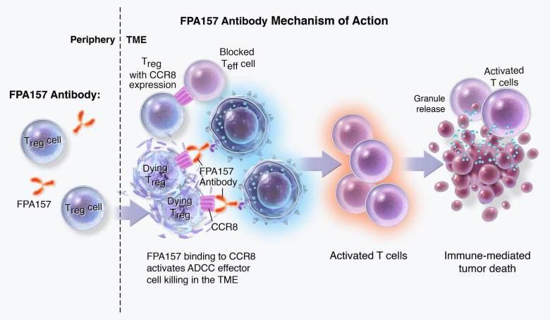 Лечение рака желудка за два миллиарда долларов