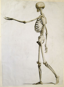 Walking skeleton from Andrew Bell