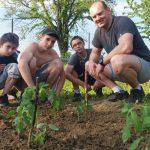 20160521 173153 e1467707371257 - Utworzyliśmy nasz szkolny ogródek warzywny