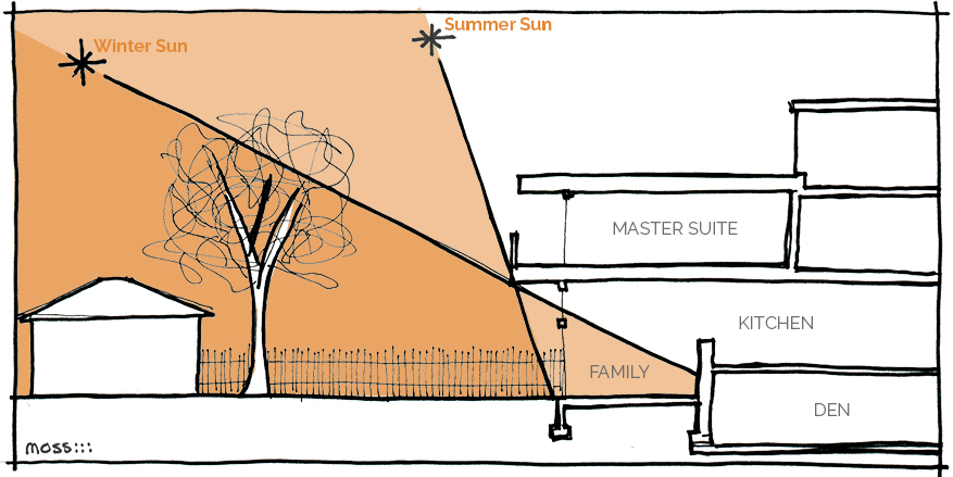 daylight and passive solar