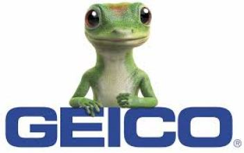 The Gecko