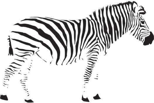 zebra as an example of closure in Gestalt Theory