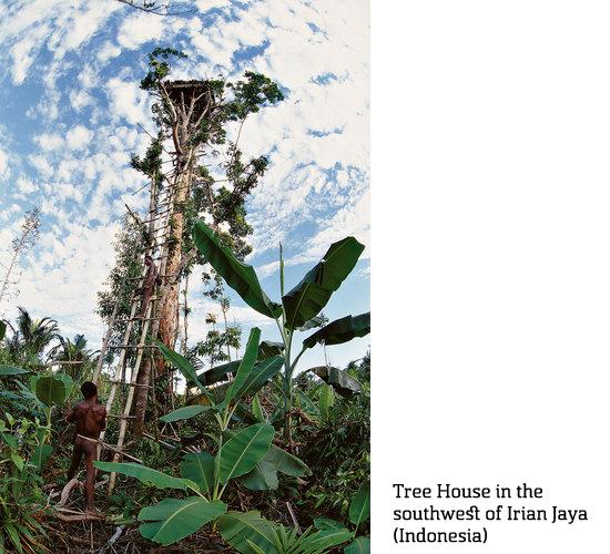 1671583-slide-va-tree-houses-05 copy