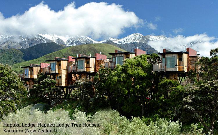 1671583-slide-va-tree-houses-07