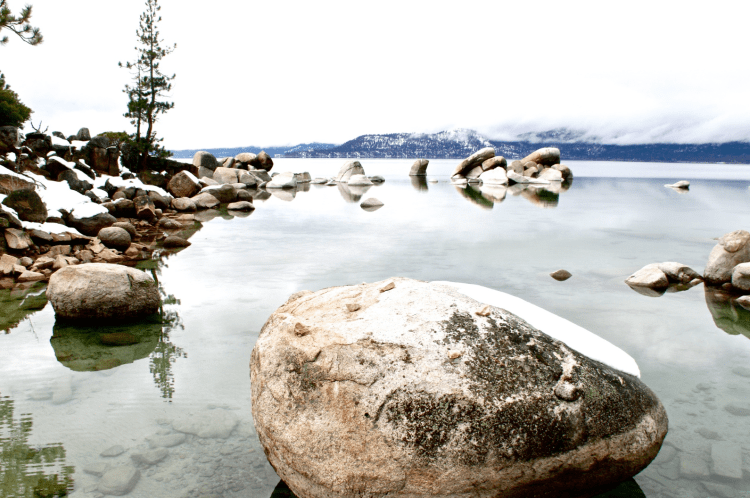 Tahoe in Winter // moss and fog