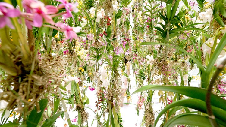 Floating-Flower-Garden_04