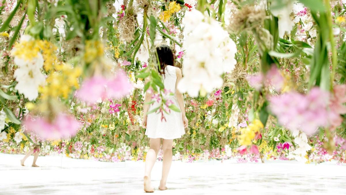 Floating-Flower-Garden_10