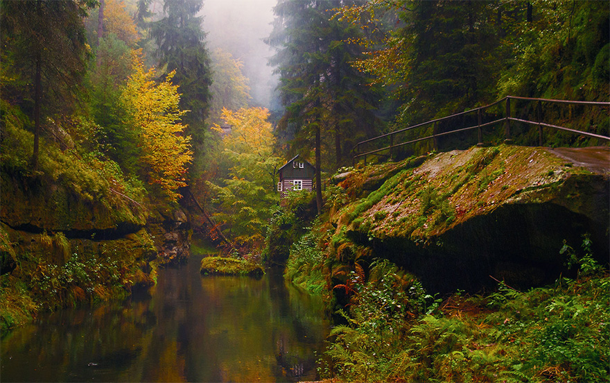 cozy-cabins-in-the-woods-47-575fd3f55dea0__880