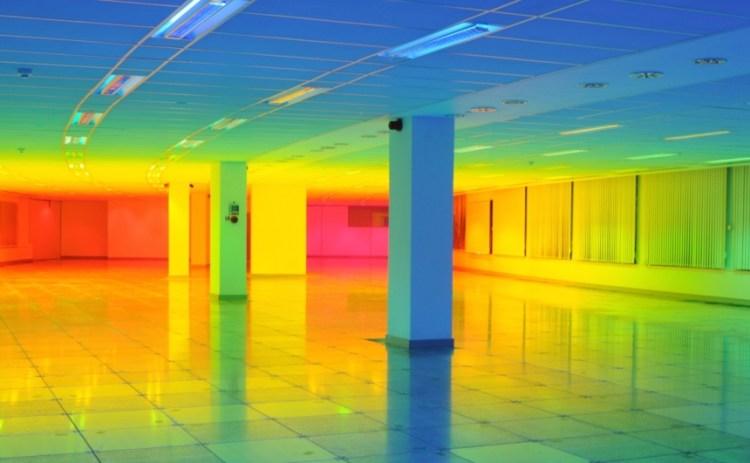 living-inside-a-rainbow-1-moss-and-fog