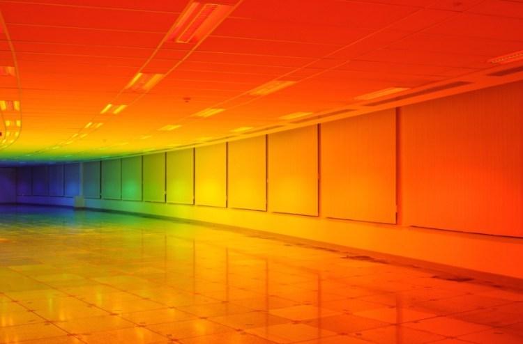 living-inside-a-rainbow-moss-and-fog