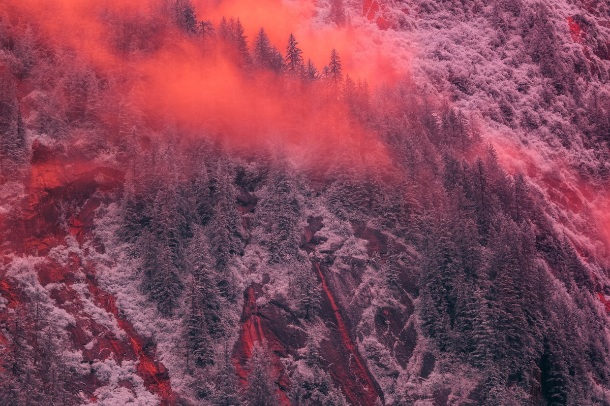infra landscape moss and fog 3