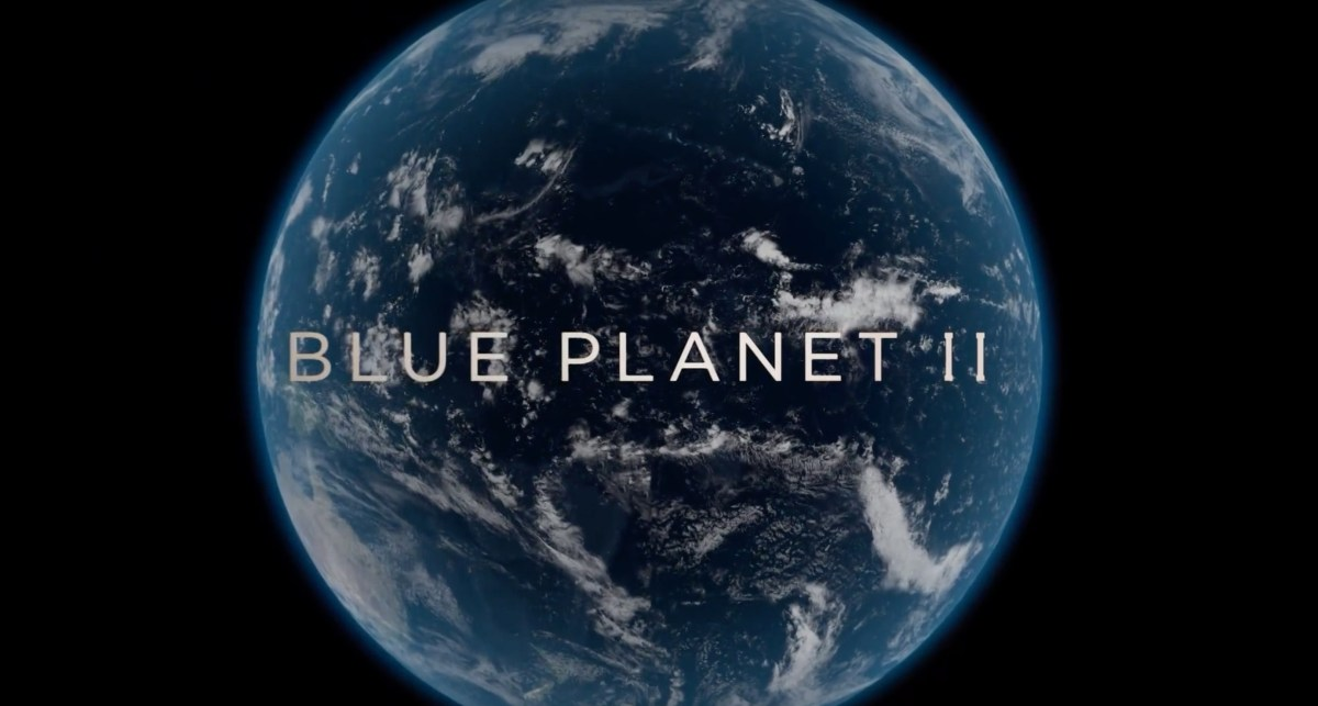 blue planet ii cover