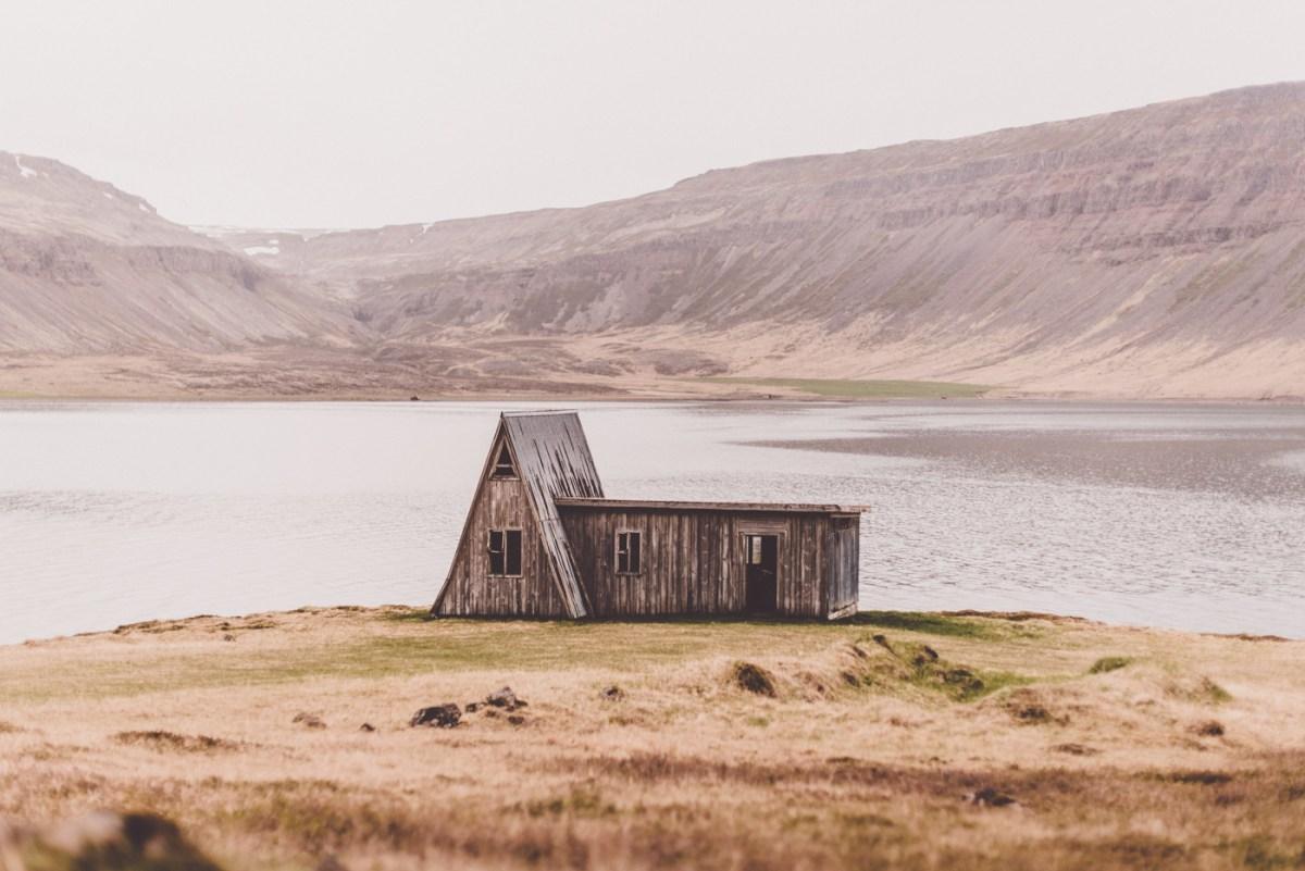 westfjords-iceland-moss-and-fog-1