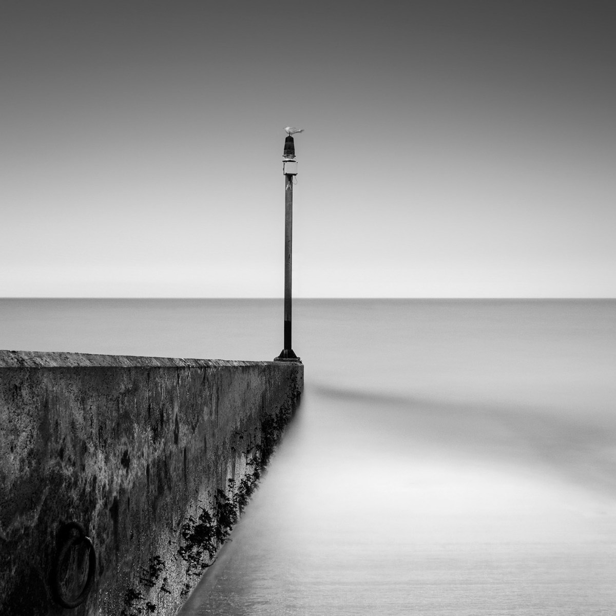 Arnaud-Bathiard-eternity-moss-and-fog-7