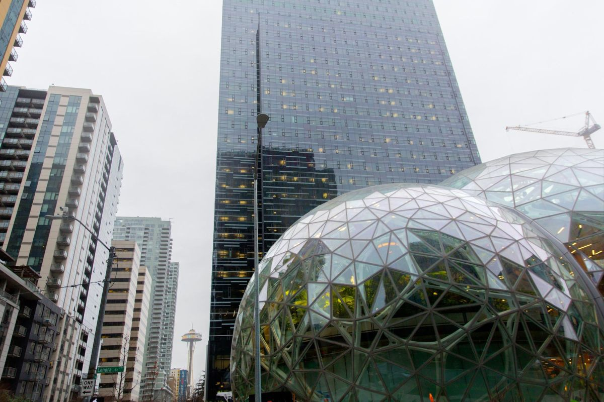 amazon-spheres-moss-and-fog-1