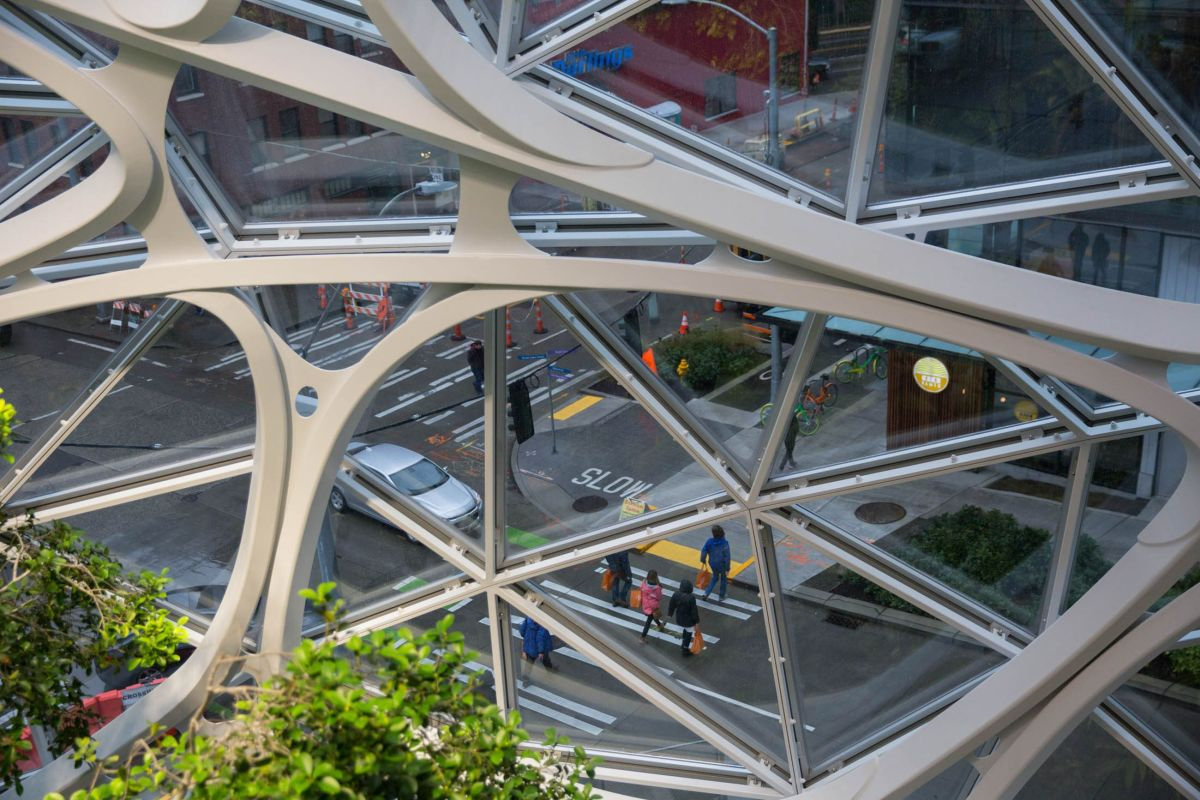 amazon-spheres-moss-and-fog-10