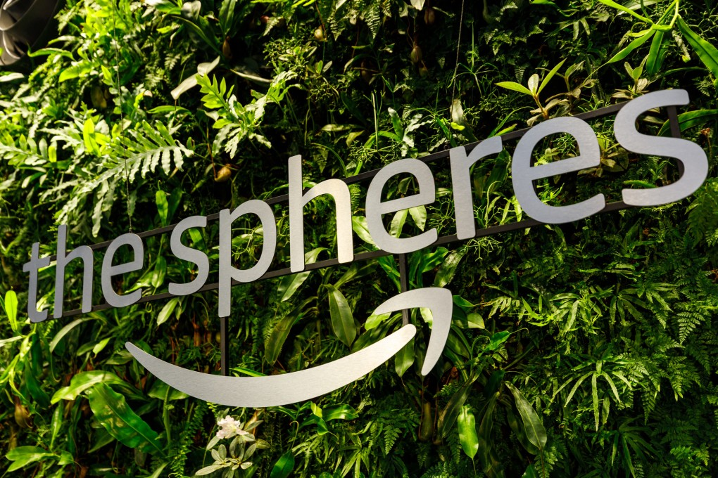 amazon-spheres-moss-and-fog-8