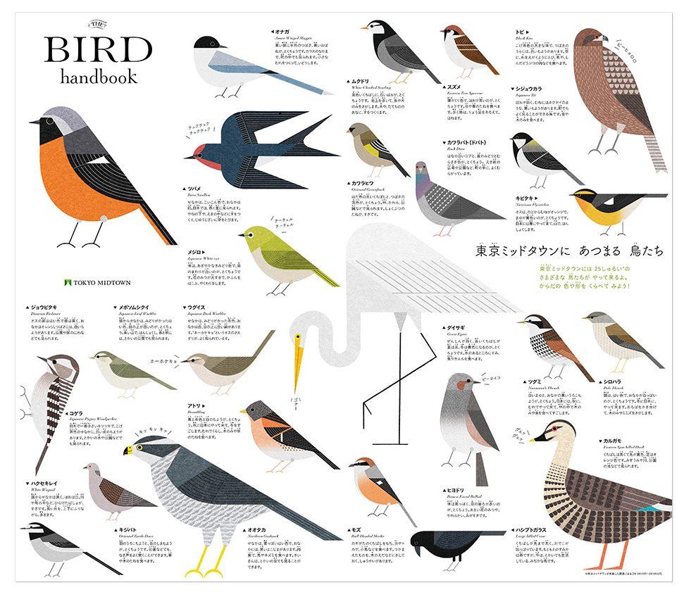 Birds-of-Tokyo-2-e1518126472915