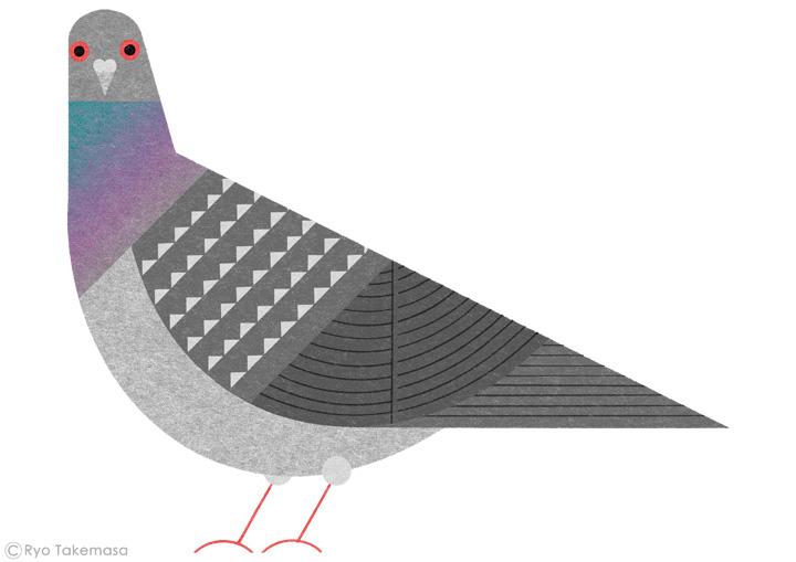 Birds-of-Tokyo-hato