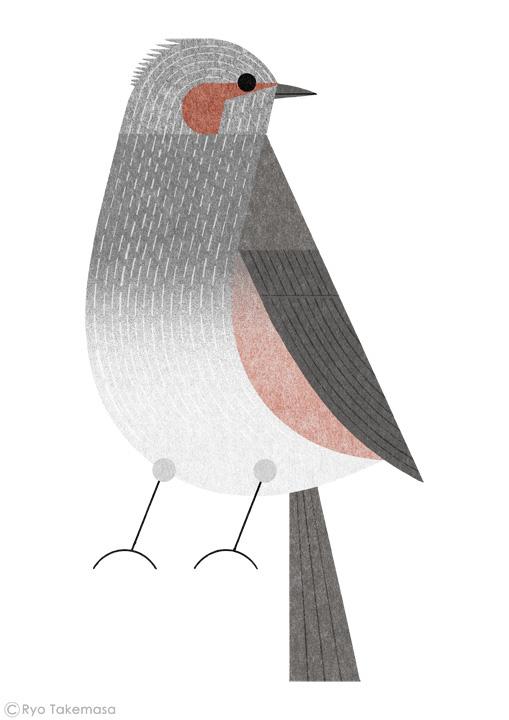 Birds-of-Tokyo-hiyodori