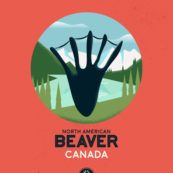 WildSideSeries__02_Beaver