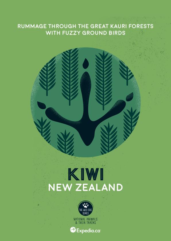 WildSideSeries__05_Kiwi