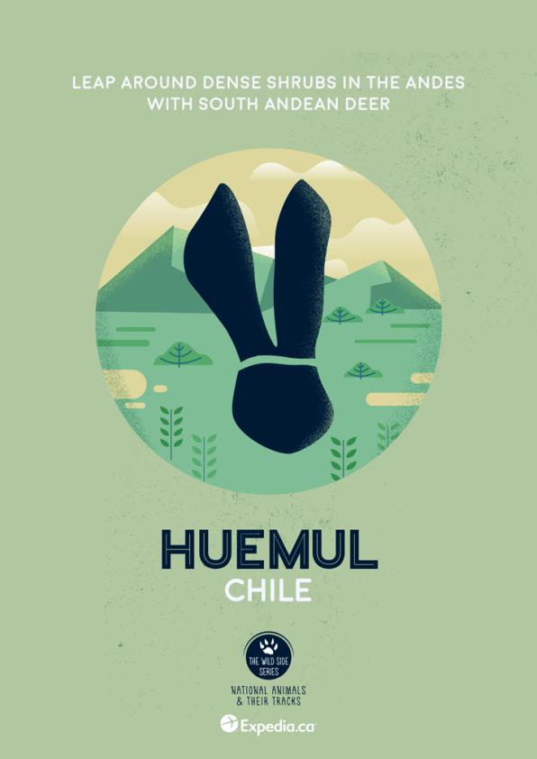 WildSideSeries__12_Huemul