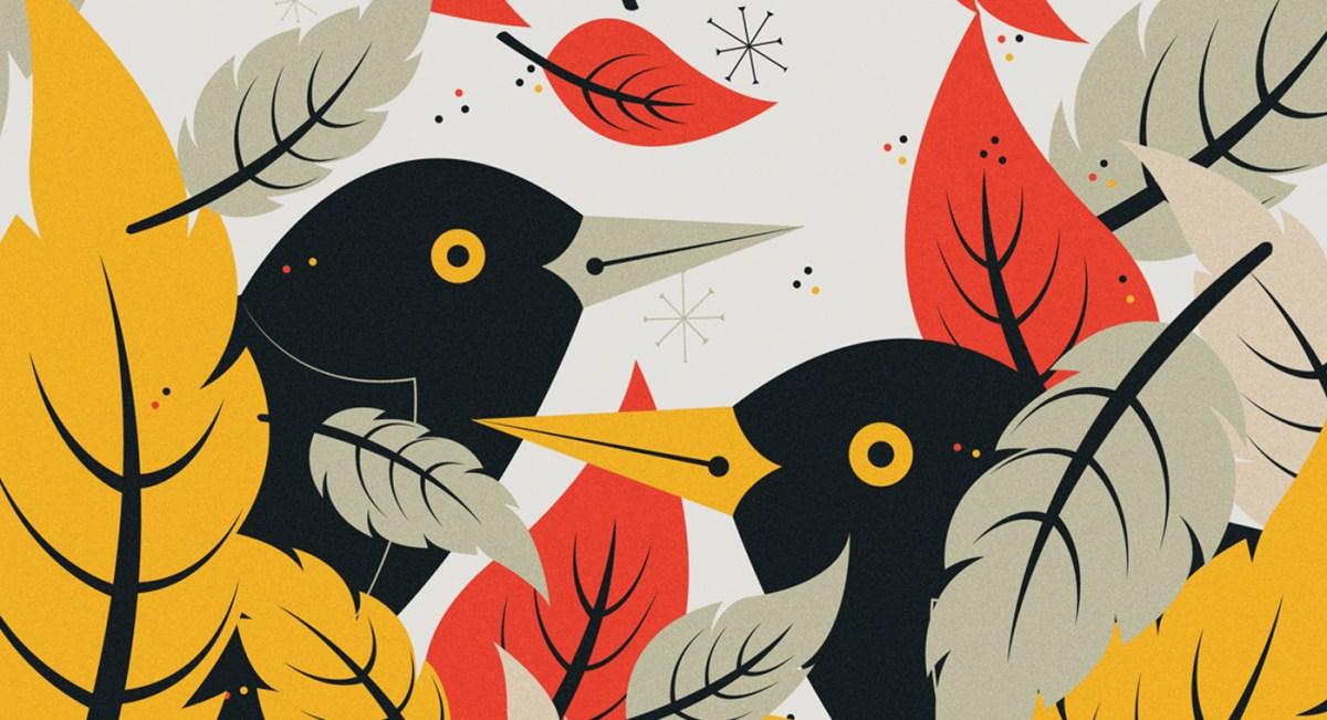 blackbird2