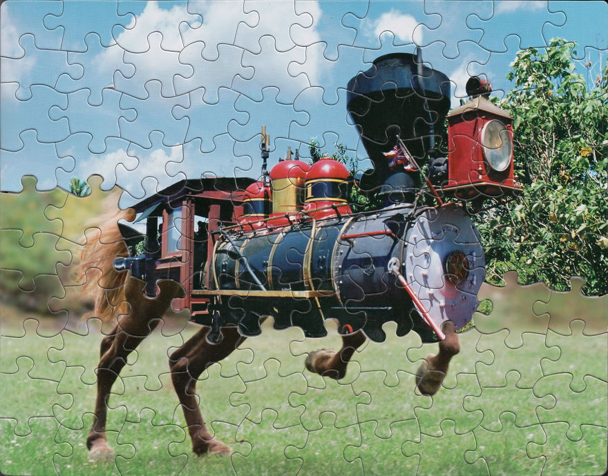 puzzle-montage-art-tim-klein-4-5bed223a59609__880