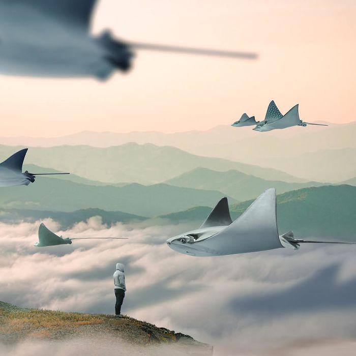 Artist-shows-his-surreal-world-through-digital-art-5c6b9eec90444__700
