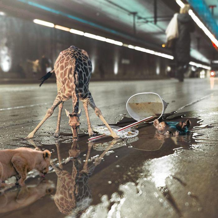 Artist-shows-his-surreal-world-through-digital-art-5c6b9f2dc644e__700