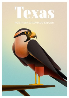 Endangered Animals Moss and Fog Texas