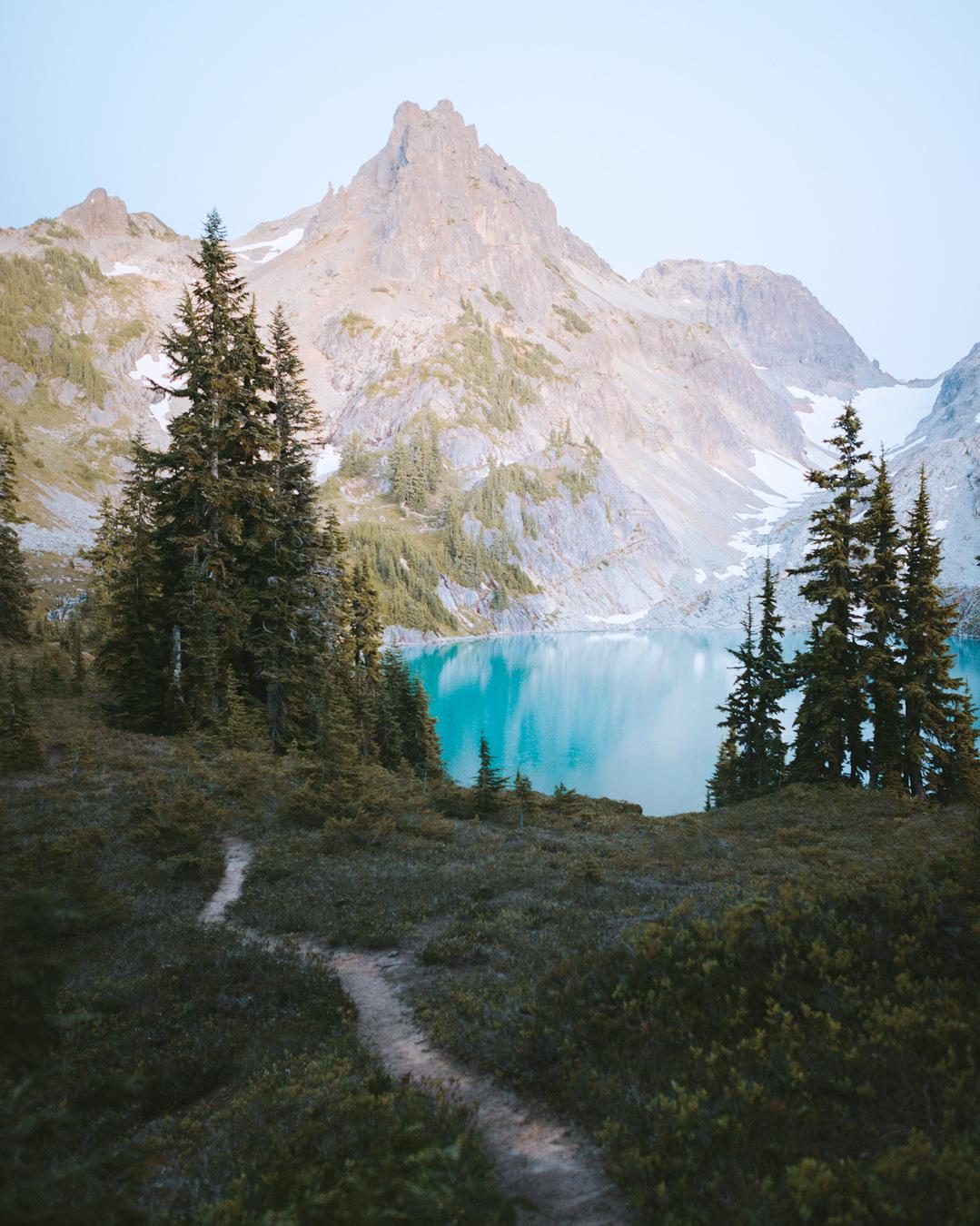 alpine-moss-and-fog-2