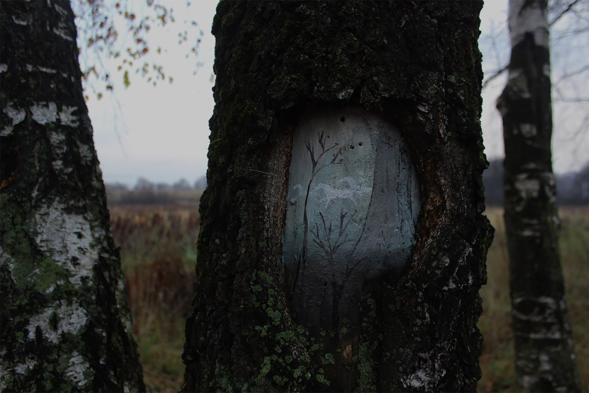 art-dudnikova-eugeniya-05