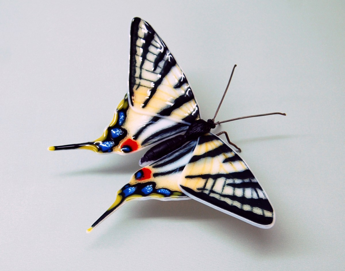 Scarce-Swallowtail-1