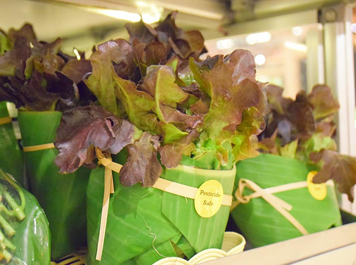 environment-ecology-supermarket-leaves-packing-plastic-reduce-thailand-10-5cab07368360f__700