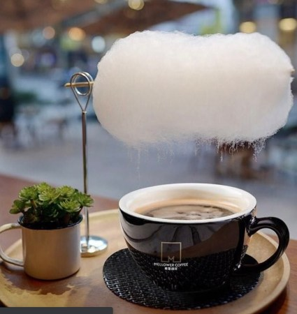 magic drinks Archives | Moss and Fog